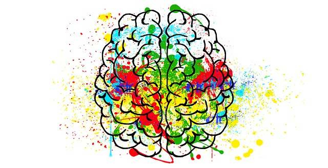 sketch of a brain with multiple colors splattered on it