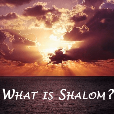 What is Shalom Revised